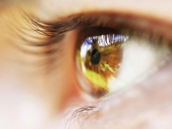 oeil_yoga_glaucome_vision