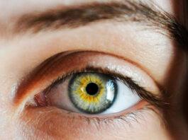oeil_vision_dmla