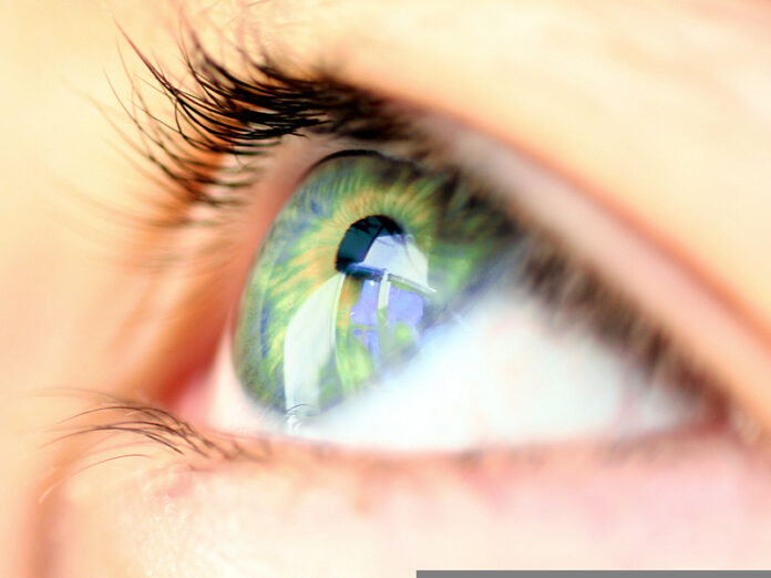 œil_glaucome_vision_vitamine_B3