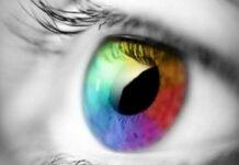 daltonisme_fitre_lunettes